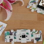 折り紙顕微鏡は購入できる?値段と使い道は?世界ふしぎ発見